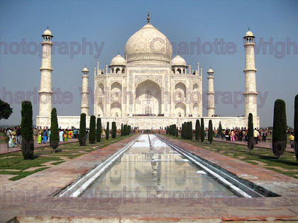 IMG 3165 