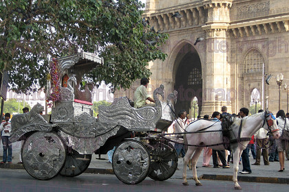 IMG 3706 
