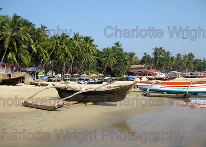 IMG 4008 