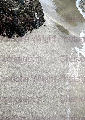 IMG 1532 