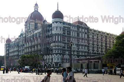 IMG 3648 