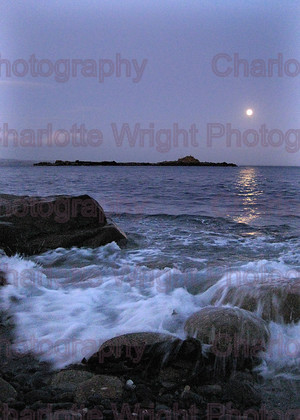 IMG 1425 