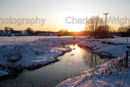 IMG 5206 