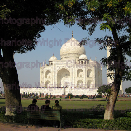 IMG 3248 