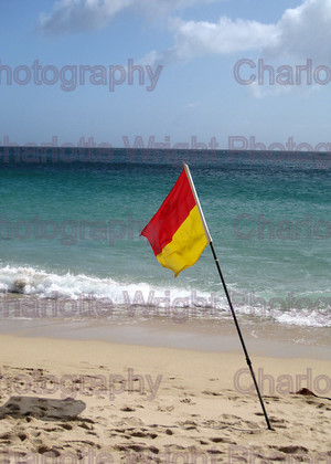 IMG 1389 