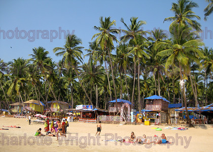 IMG 4001 
