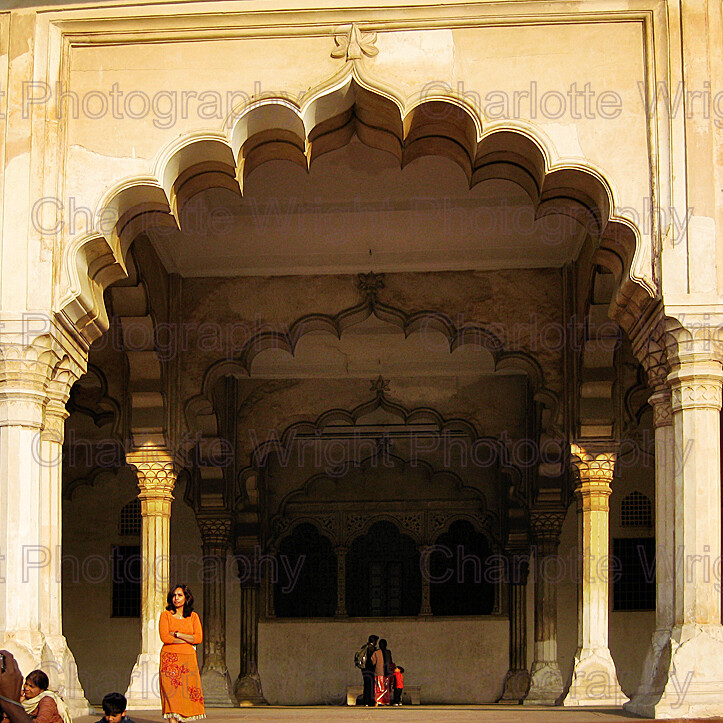 IMG 3292 
