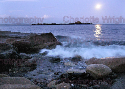 IMG 1435 