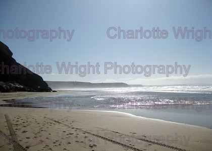 IMG 2064 